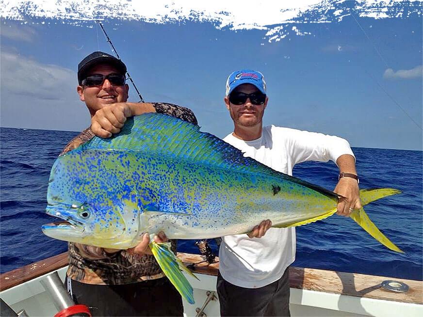 Islamorada Offshore & Deep Sea Fishing Charters at Bud N