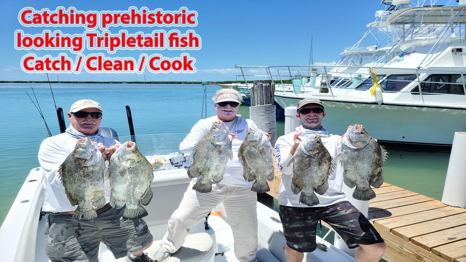 Epic Tripletail Fishing in Florida Bay