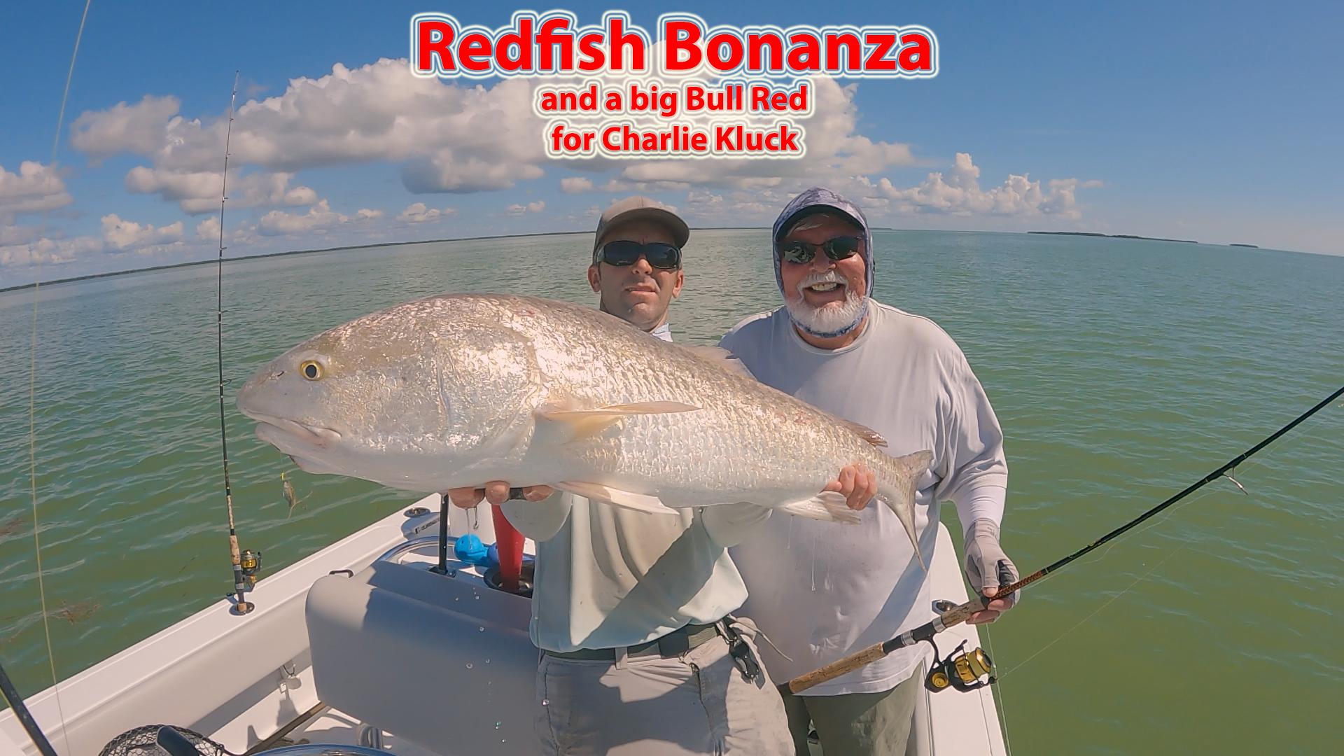 Redfish Bonanza!